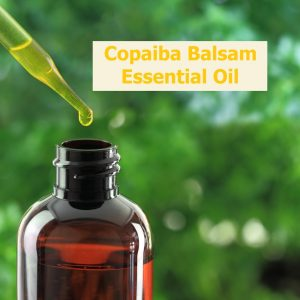Caryn explores Copaiba Balsam essential oil uses and benefits.