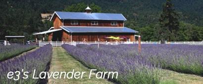 e3 Lavender Farm