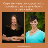 Caryn interviews two acupuncturists, Jennifer Parks, L.Ac. and Danube Jacobs, L.Ac., on how to safely combine essential oils and acupuncture.