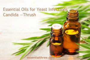 Many studies support the use of essential oils in treating candida. Here are some suggested essential oils for yeast infections, candida, and thrush as well as simple recipes you can use.