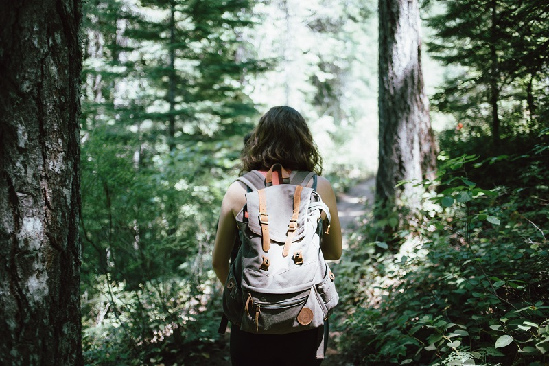 Forest bathing essential oils let you enjoy the therapeutic benefits of spending mindful, intentional time around trees, which can improve health and happiness.