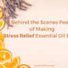 Our customers asked for a stress relief essential oil blend that gets you through the day with more comfort and ease, thus e3's Stress Relief Blend is borne!